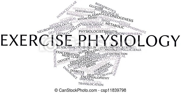 Abstract word cloud for exercise physiology with related