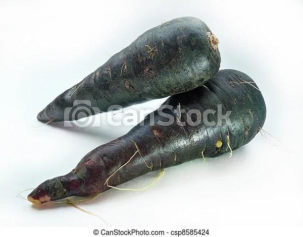 Fresh black carrots isolated on white background
