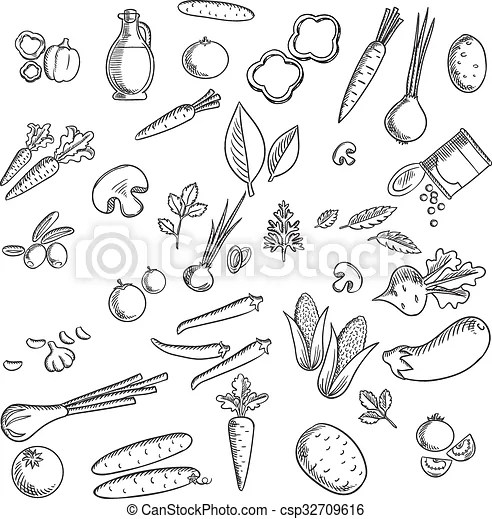 Fresh vegetables and herbs sketches set with tomato