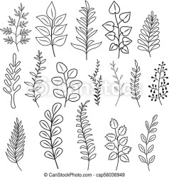 Hand drawn branches with leaves and flowers rustic doodle vector branching decoration isolated branch floral leaf twig CanStock