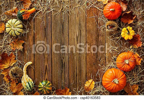 Fall White Pumpkins Wallpaper Harvest Or Thanksgiving Background With Gourds And Straw