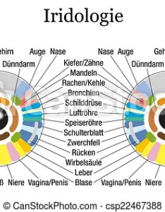 Iridology chart german white csp also or iris diagnostic rh canstockphoto
