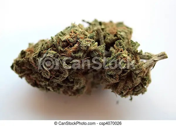 Kimber, california medical marijuana.