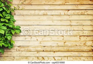 Light wood background Light wooden background with copy space CanStock