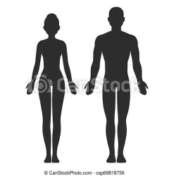 silhouette male female vector clip isolated template body