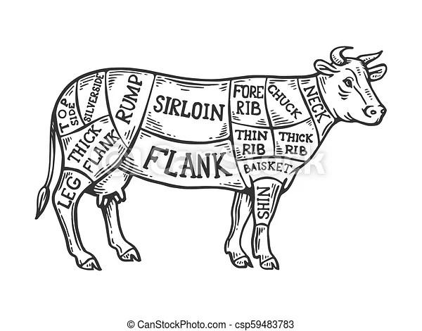 2wire Gfci Wiring Diagram Cow Meat Diagram Wiring Diagram