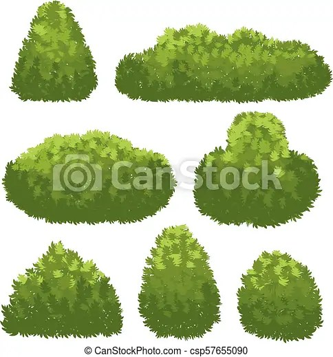 Nature Hedge Garden Green Bushes Cartoon Shrub And Bush Vector Set Isolated On White Background Landscape Plant