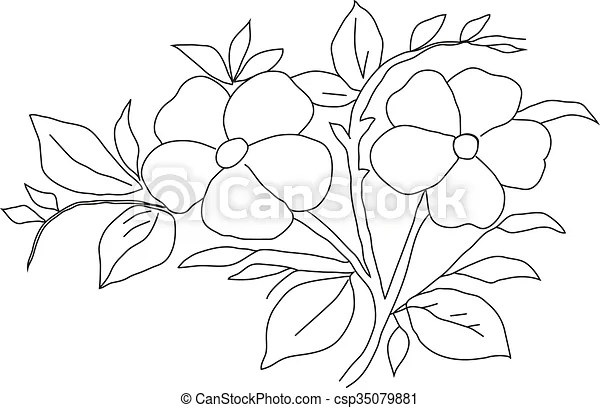 Pencil drawing violet. Manual pencil drawing of a flower