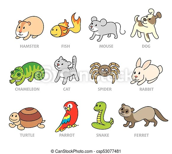 pet shop set types