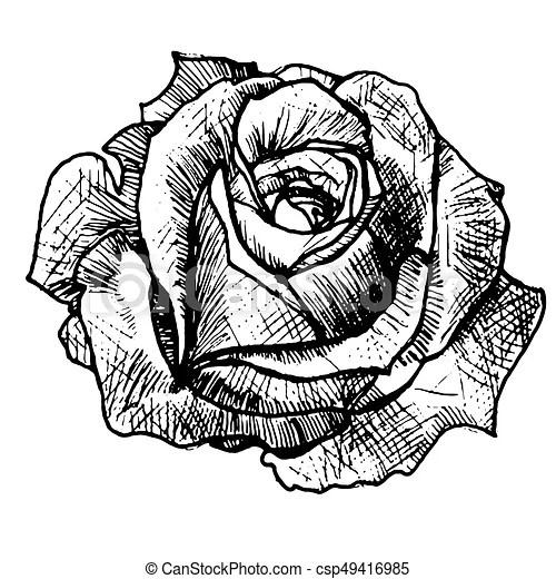 Realistic rose tattoo. Art sketch rose. stylish idea of a