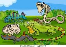Reptiles and amphibians group cartoon Cartoon