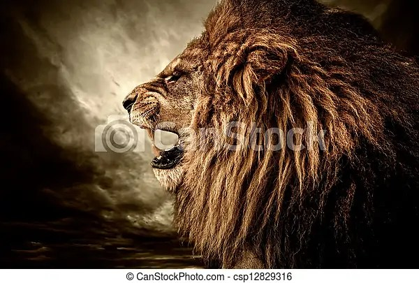Lion Roaring Stock Photo Images 7 156 Lion Roaring Royalty Free Pictures And Photos Available To Download From Thousands Of Stock Photographers