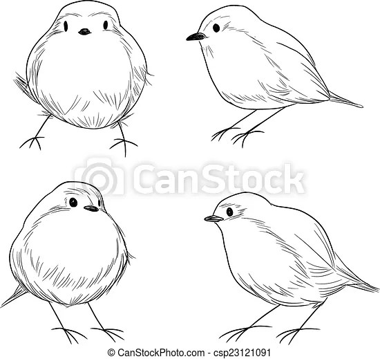 Robin bird line art. Hand drawn line art set of cute