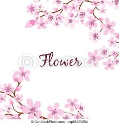 Sakura branch flower pink background vector image