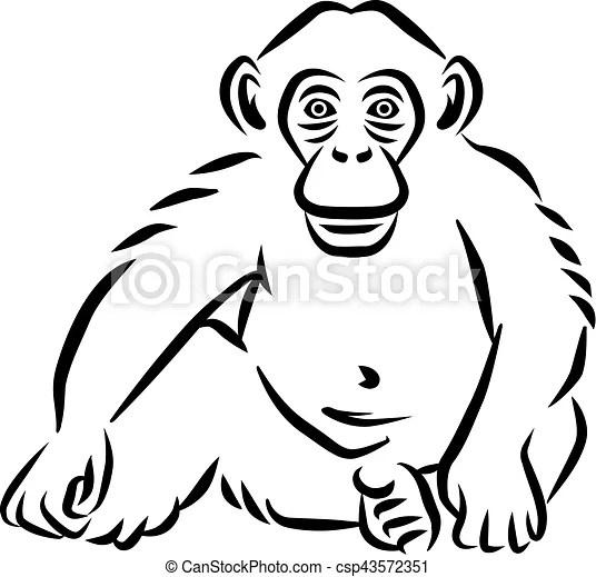 sitting baby chimpanzee hand