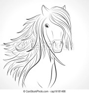 sketch of horse head with mane