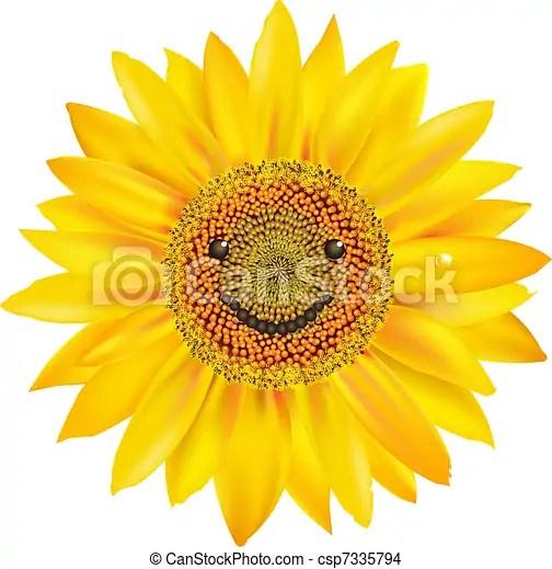 smiling sunflower isolated