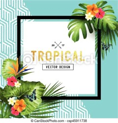 tropical border leaves frame vector palm colourful vibrant butterflies flowers illustration clip flamingo clipart drawing line