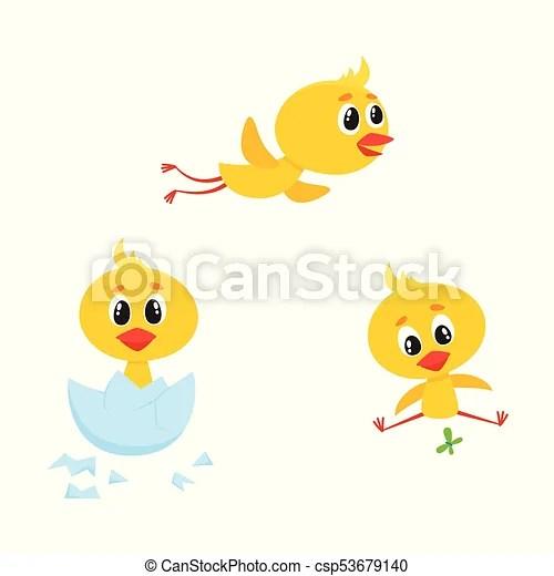 vector cartoon cute chicken