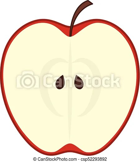 vector of red apple