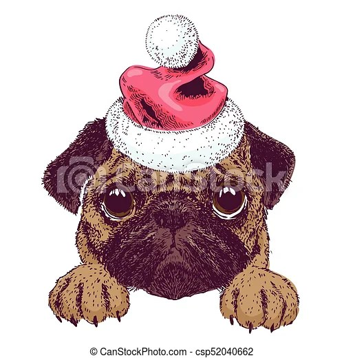 vector sketch of cute pug puppy