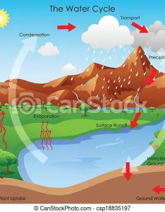 Water cycle csp also vector illustration of diagram showing rh canstockphoto