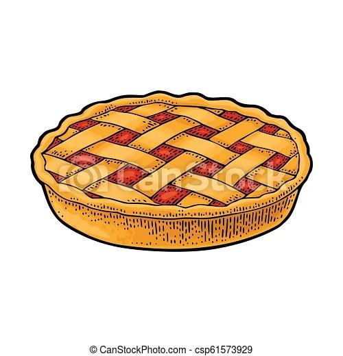 homemade apple pie. vector