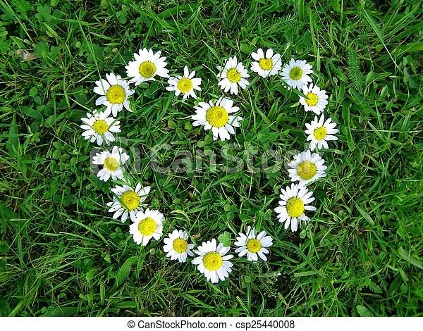 Blumen herz form