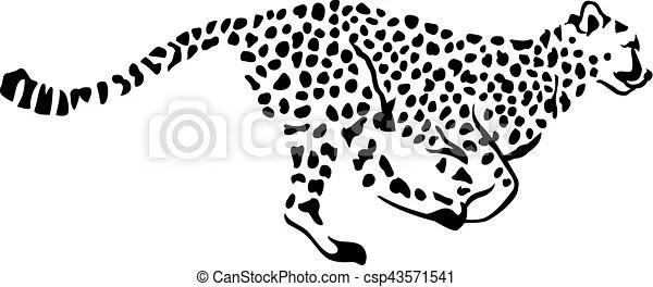 Gepard, rennender , leopard.