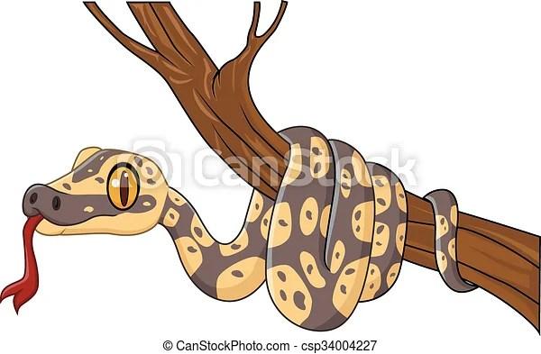 Arbre Serpent Branche Dessin Anime