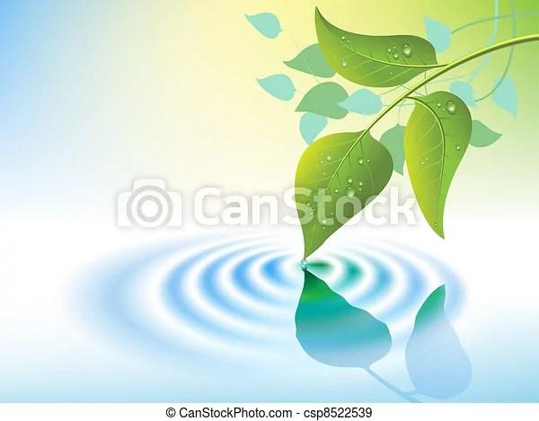 水漣漪. 葉子. 水. 綠色. 波紋. 矢量. 葉子.