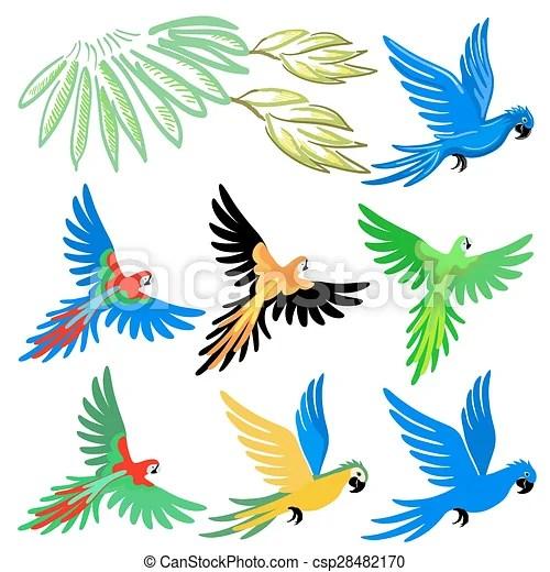 圖案, 集合, 金剛鸚鵡, 鸚鵡 - Macaw, 鸚鵡, 圖案, 集合, 矢量, 插圖, 被隔離, 在懷特上, 背景csp28482170 的向量插圖 ...