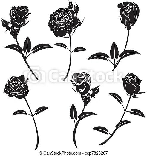 Ilustracje Wektorowe róża, kwiat, Wektor, Grafika