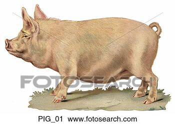 Clipart - victorian die  cut illustration  of a pig. fotosearch  - search clipart,  illustration,  drawings and vector  eps graphics images