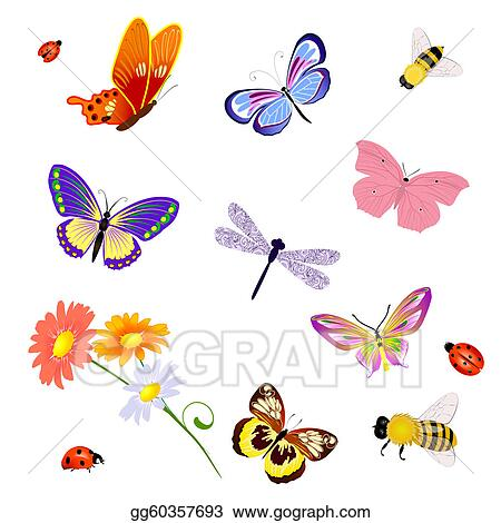 clip art vector - butterfly insects