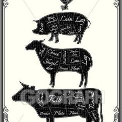 Pig Cuts Diagram 1964 Chevy Truck Wiper Wiring Clip Art Vector Cut Carcasses Of Chicken Cow Lamb