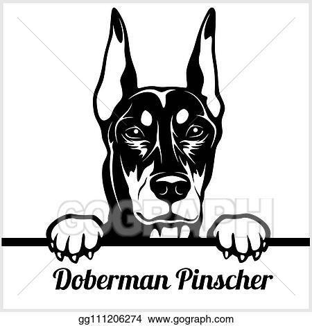 Free Svg Happy Fall Yall Doberman Pinscher Dog