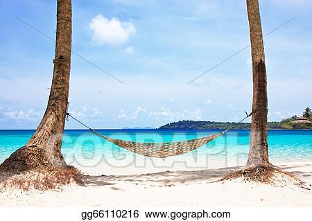 stock image hammock between
