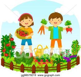Vector Art Kids in a vegetable garden Clipart Drawing gg98579219 GoGraph