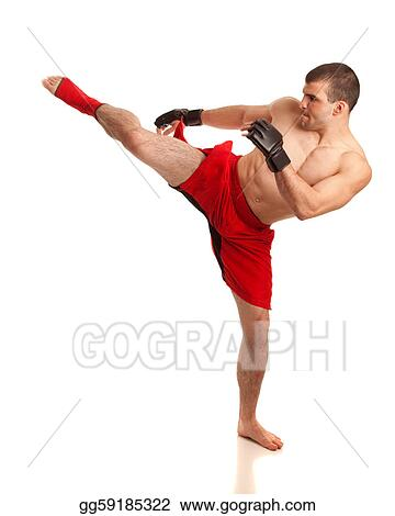 stock photography mma fighter