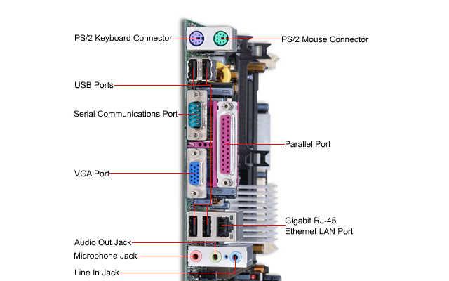 Los componentes internos