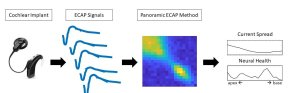 The Panoramic ECAP Method: modelling the electrode-neuron interface in cochlear implant users