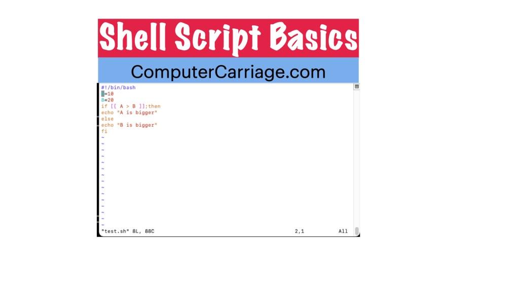shell script basics