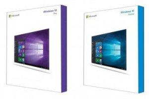 Windows 10 Pro, Windows 10 Home