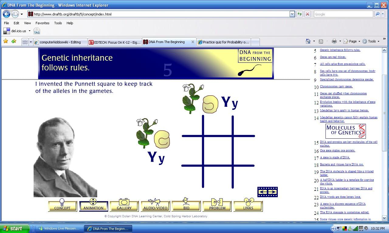 Lab 3 Punnett Squares Worksheet Answer