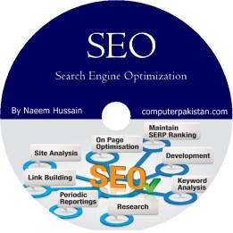 Urdu Video DVD of SEO