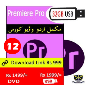 Premiere Pro Video course in Urdu in Pakistan Learn at Home