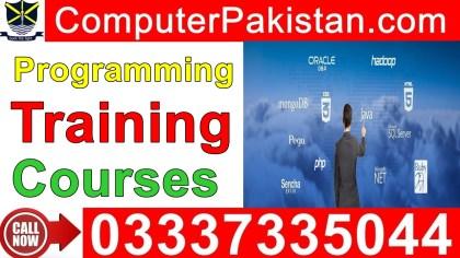 free online programming courses for beginners in urdu