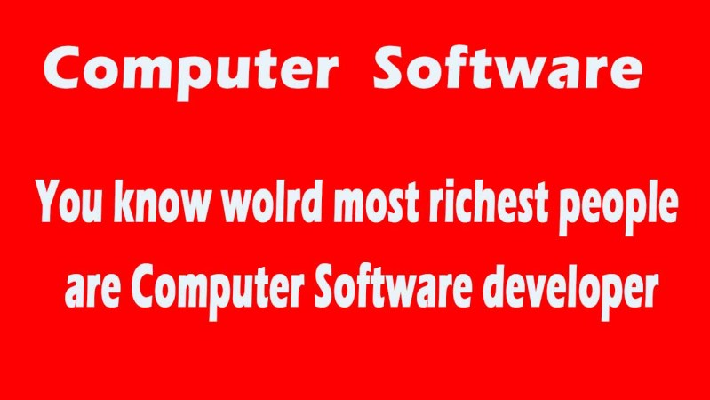 About Computer Software Developer in World