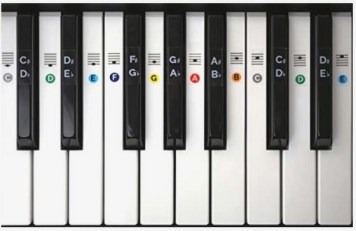 Color Piano Keyboard Stickers